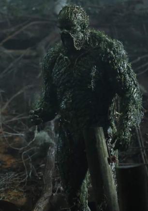 190531swamp